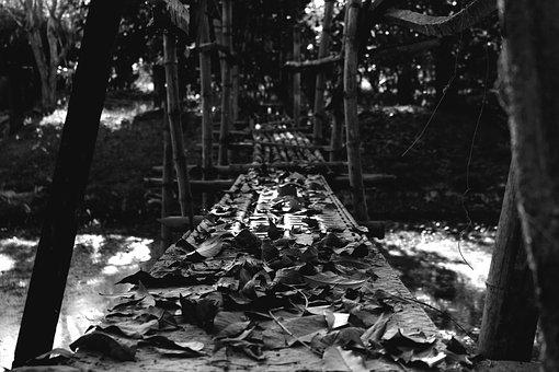 Bridge, Leaves, Black And White, Black, White, Hanging