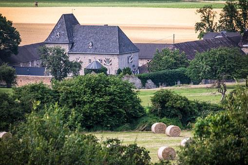 Castle, Reiterhof, Fields, Burg Holzheim