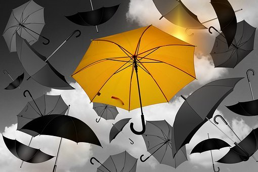 Umbrella, Yellow, Black, White, Selection, Especially