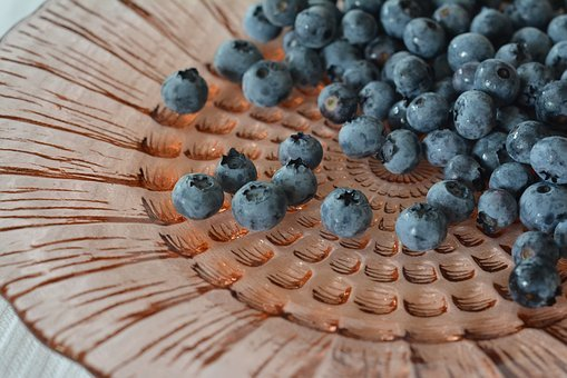 Blueberries, Bilberry, Berries, Bilberry American