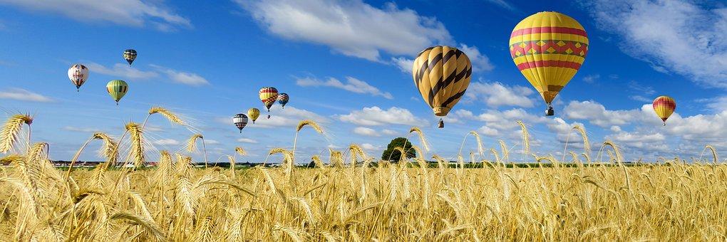 Nature, Landscape, Field, Sky, Wheat, Wheat Field