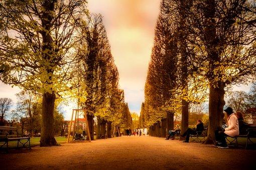 Copenhagen, Denmark, City, Urban, Public Park, Walkway