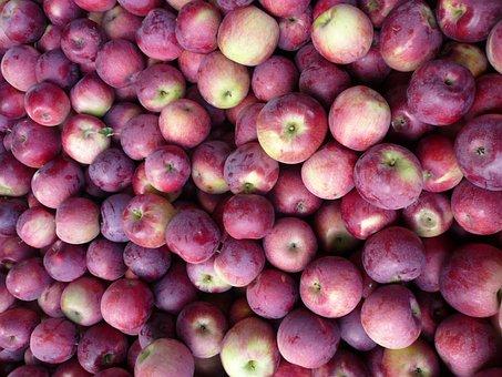 Groceries, Apples, Fresh Fruit, Healthy, Supermarket