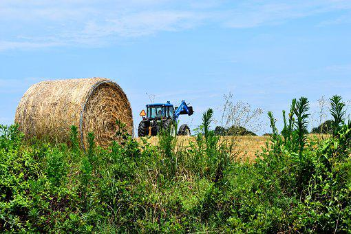 Hay, Bales, Tractor, Agriculture, Field, Farm, Farming