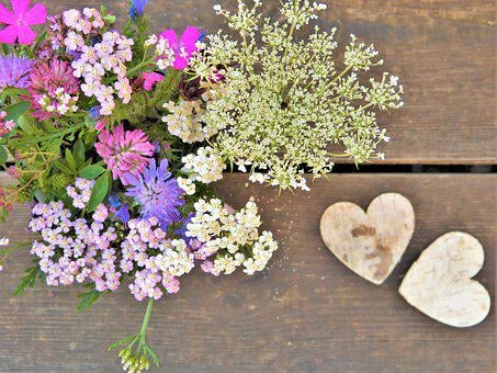 Wild Flowers, Wildflowers, Flowers, Heart, Bouquet