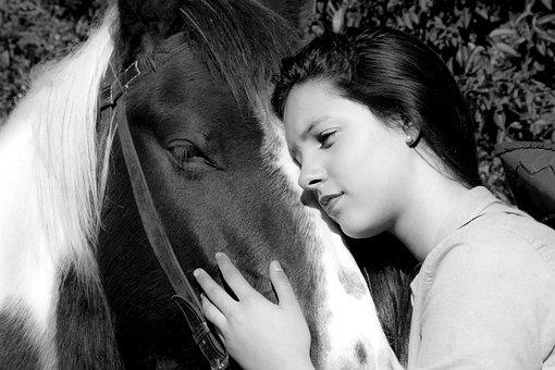 Horse, Woman Horse, Rural, Farm, Field, Nature
