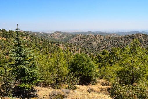 Mountains, Landscape, Forest, Nature, Summer, Peaks