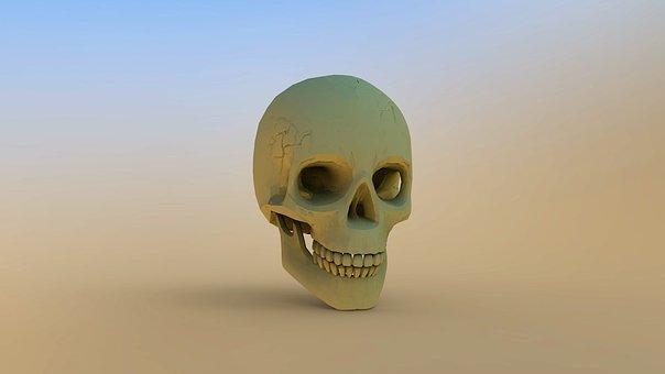 Skull And Crossbones, Skull, Background, Horror, Weird