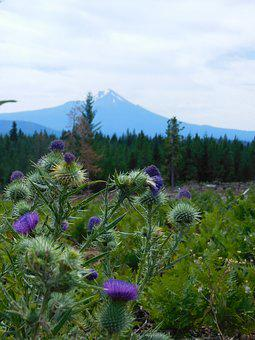 Mt, Mcloughlin, Mountain, Southern Oregon, Oregon