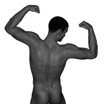 Man, Muscles, Act, Naked, Erotic, Sexy, Figure