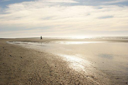Beach, Evening, Gold, Peace