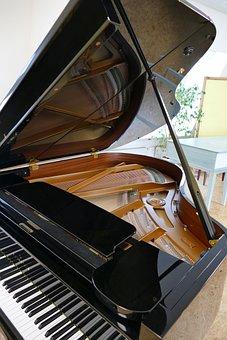 Wing, Piano, Bechstein, Grand Piano