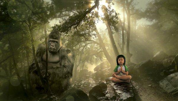 Fantasy, Forest, Gorilla, Child, Mood, Fairy Tales