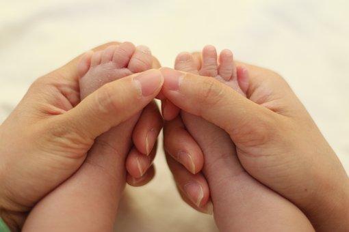 Baby Feet, Hands, Feet, Newborn, Child, Baby, Family