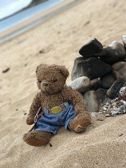 Teddy, Bear, Beach, Toy, Cute, Childhood, Happy