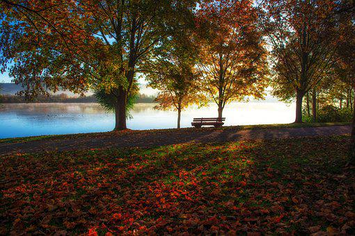 Lake, Nature, Landscape, Water, Peaceful Atmosphere
