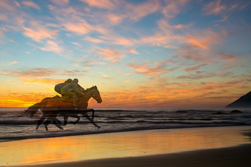Sunset, Racing, Horses, Beach, Sport, Outdoor, Exercise