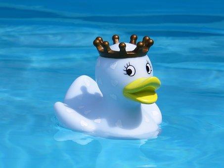 Bath Duck, Quietscheente, Rubber Duck, Swim