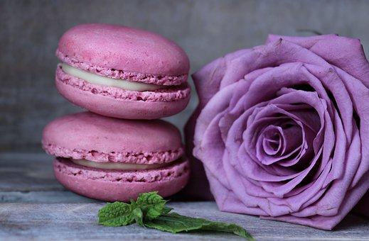 Macarons, Rose, Floribunda, Rose Bloom, Mint, Pastries