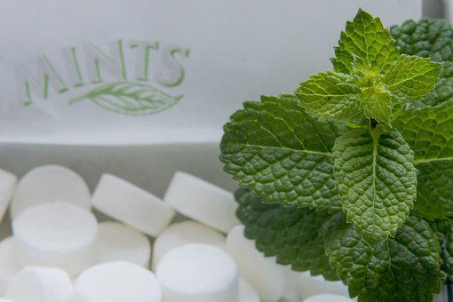 Candies, Mint, Menthol, Foliage, Chill, Mints