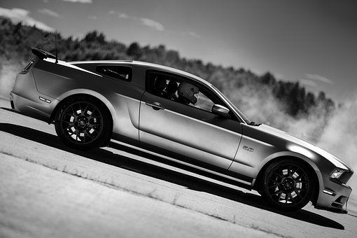 Ford, Mustang, 5, 0, America, Muscle, Car, Petrolhead