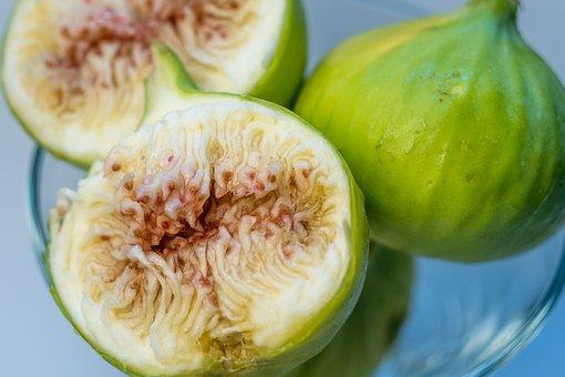 Fig, Fruit, Sweet, Garden, Summer, Nature, Green
