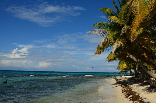 Beach, Belize, Caribbean, Sea, Ocean, Summer, Water