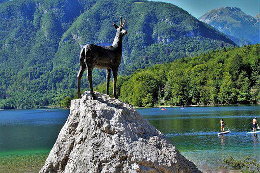 Bohinj, Lake Bohinj, Julian Alps, Slovenia, Bohinj Lake