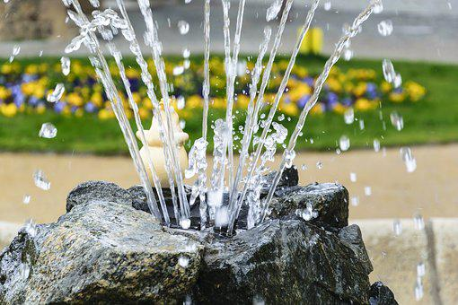 Water, Fontaine, Color, Flowers, Fountain, Green, Drip