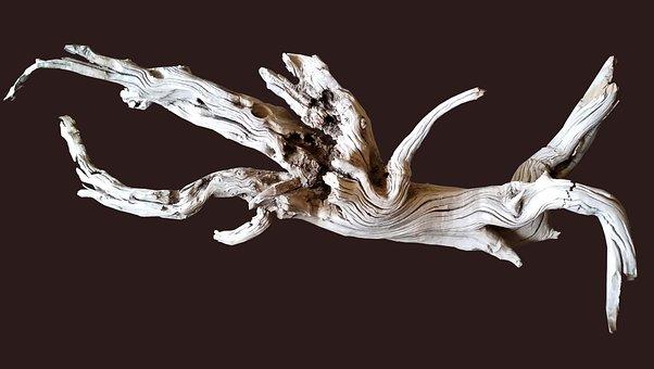 Driftwood, Decoration, Shape, Texture, Nature