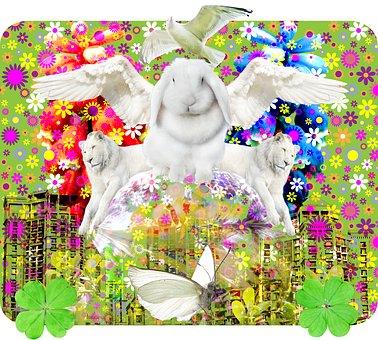 Dulcinea, Flowers, City, Happiness, Rabbit, Bunny