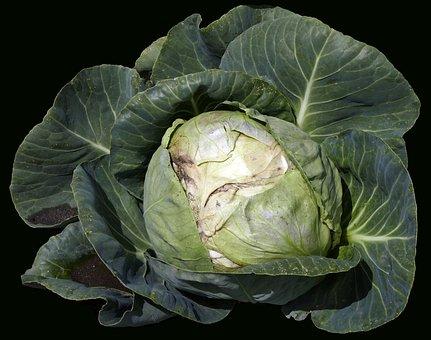 Vegetables, White Cabbage, Herb, Cauliflower, Cabbage