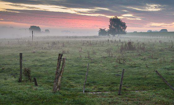 Sunrise, Meadow, Landscape, Nature, Fog, Mood, Grass