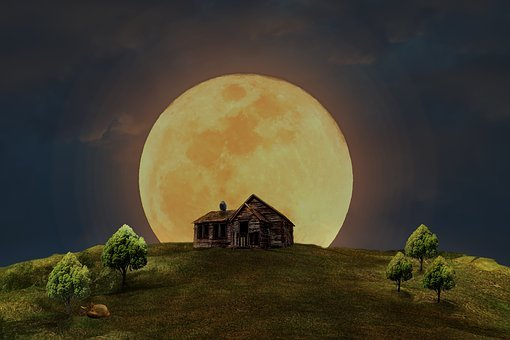 Full Moon, Home, Meadow, Trees, Fuchs, Owl, Night