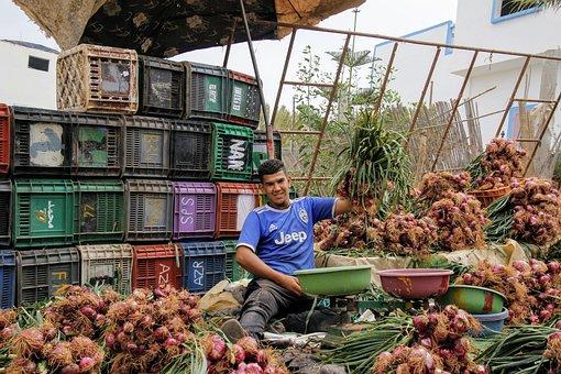 Onions, Onion Seller, Vegetables, Dealer, Market, Sell