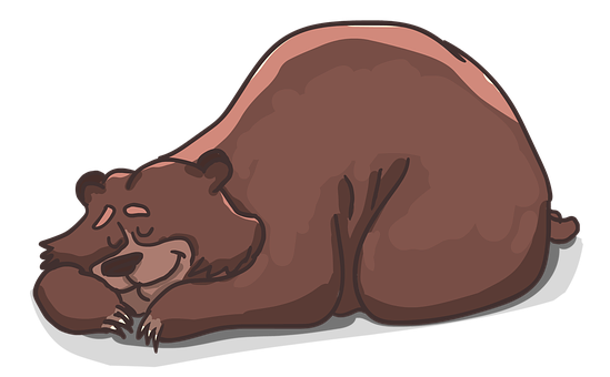 Bear, Lies, Sleeps, Sleep, Resting, Grizzly, Shaggy