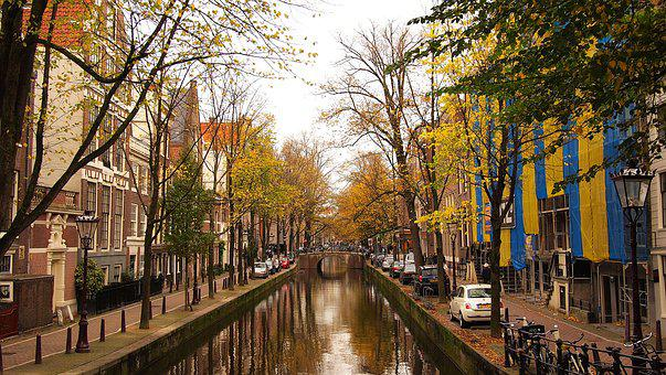 Water, Canal, Streets, Trees, Fall, Autumn, Cars, City