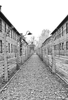 Auschwitz, Camp, Holocaust, Concentration, Poland