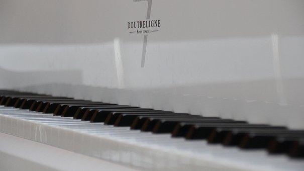 Plan, Piano, Music, Buttons, Keys, Keyboard