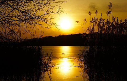 Sacrow Lake, King Of The Forest, Lake In Brandenburg