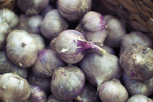Instagram, Blog, Social, Media, Foodie, Onion, Garlic