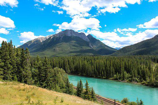Bow River, Banff, Alberta, Canada, Forest, Mountain