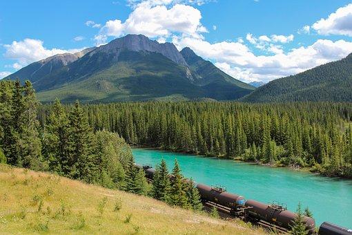 Train, Cargo, Bow River, Banff, Alberta, Canada, Forest