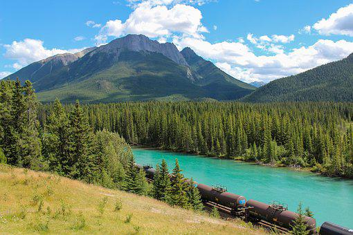 Train, Cargo, Bow River, Banff, Alberta, Canada, Forest