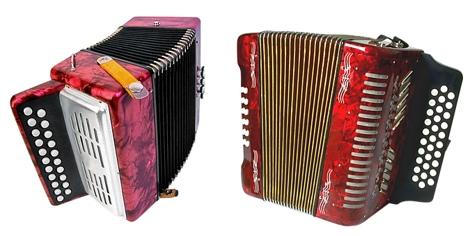 Accordion, Fur, Music, Orchestra, Philharmonic Hall