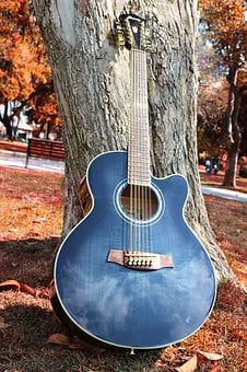 Guitar, Acoustic Clouds, Autumn, Plaza, Park, Tree