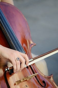 Music, Musician, Sound, Concert, Violin, String