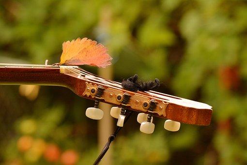 Guitar, Guitar Neck, Musical Instrument, Music