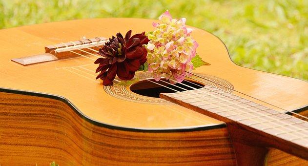 Guitar, Musical Instrument, Music, Stringed Instrument