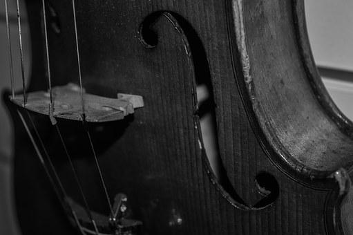 Violin, Music, String, Instrument, Close Up, Web